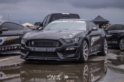 ifo (47 of 91)
