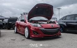 ifo (6 of 91)