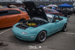 ifo (85 of 91)
